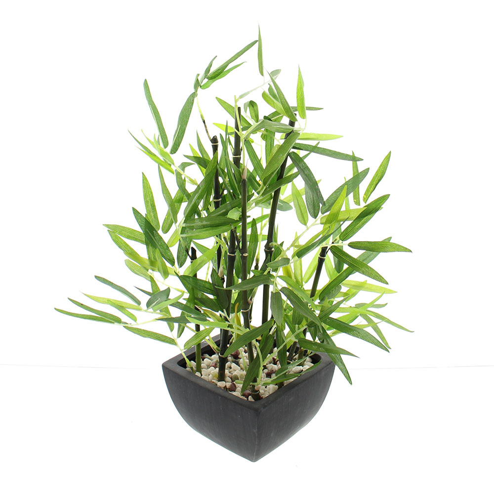 """Декоративное растение """"Бамбук в кашпо"""""""