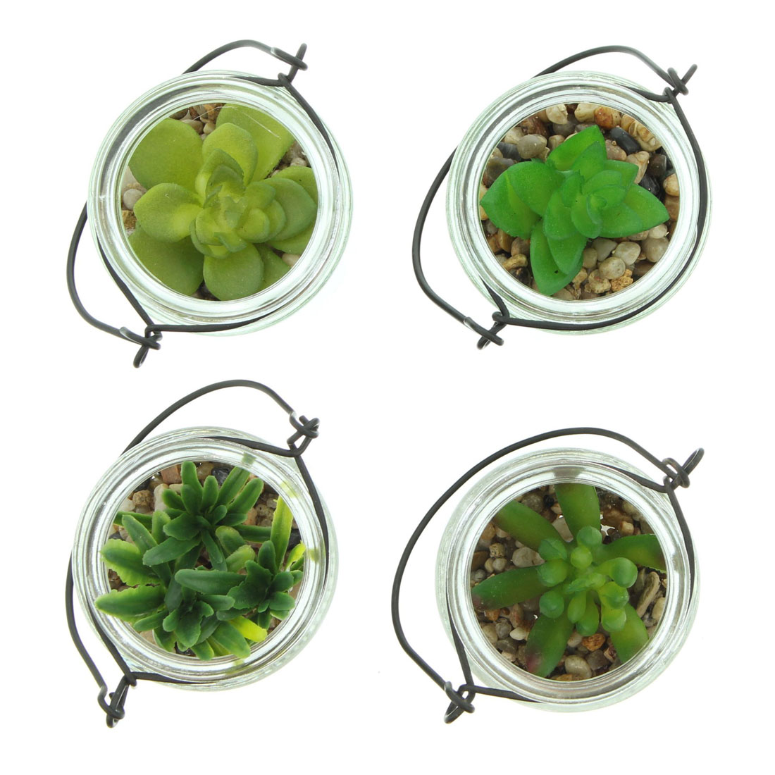 """Декоративные растения """"Суккуленты в баночках"""", 4 штуки [06636],"""