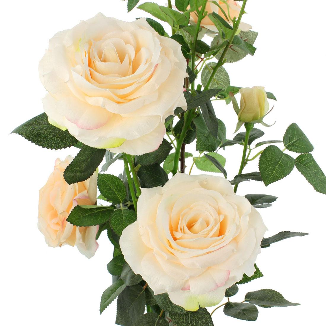 """Декоративное растение """"Розовый куст"""" [06661],"""