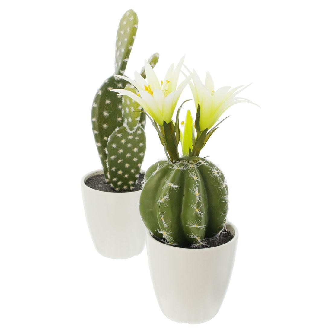 """Декоративные растения """"Кактусы"""", 2 штуки [06330],"""