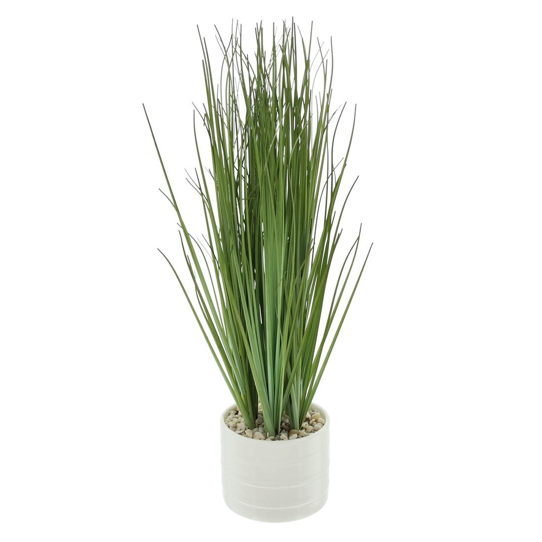 "Декоративное растение ""Трава"" [06848],"