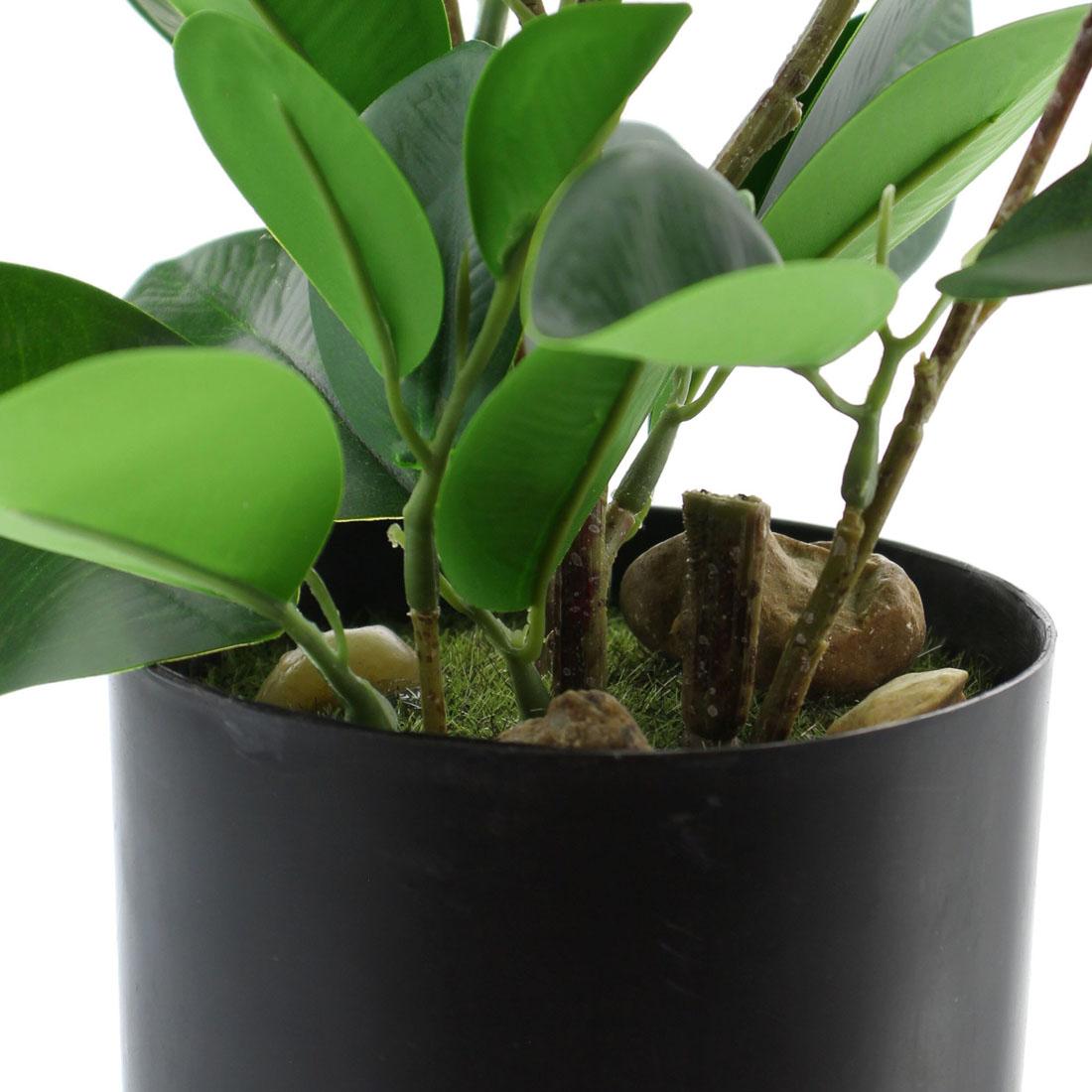 """Декоративное растение """"Фикус"""" [06969],"""