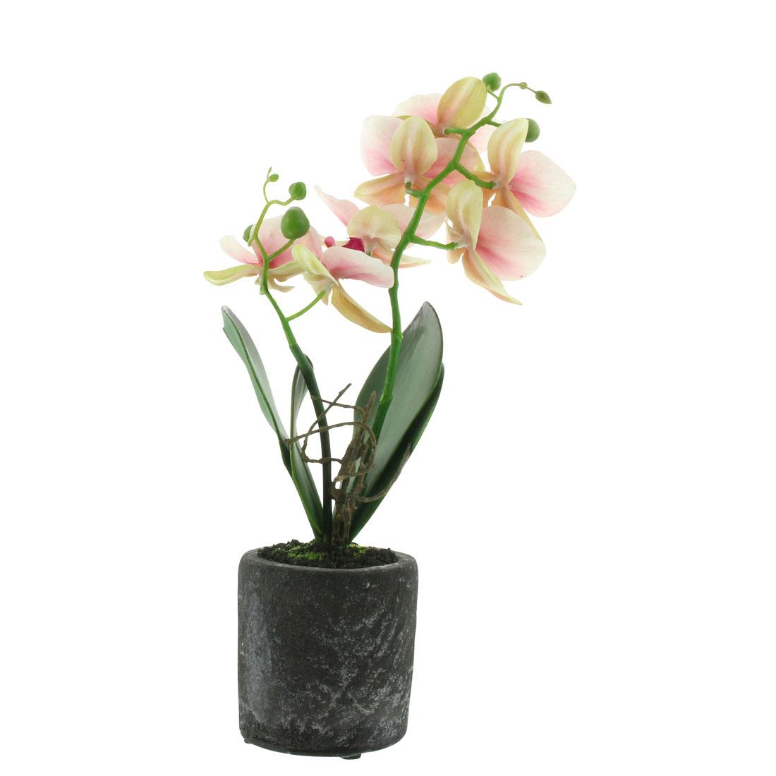 """Декоративное растение """"Орхидея"""" [07200],"""
