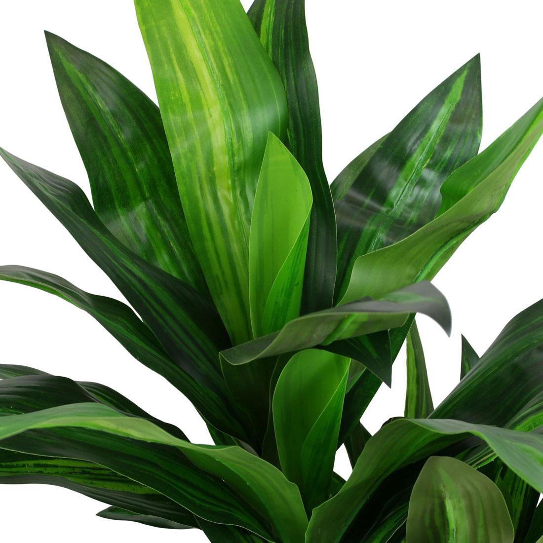 "Декоративное растение ""Юкка"" [07424],"