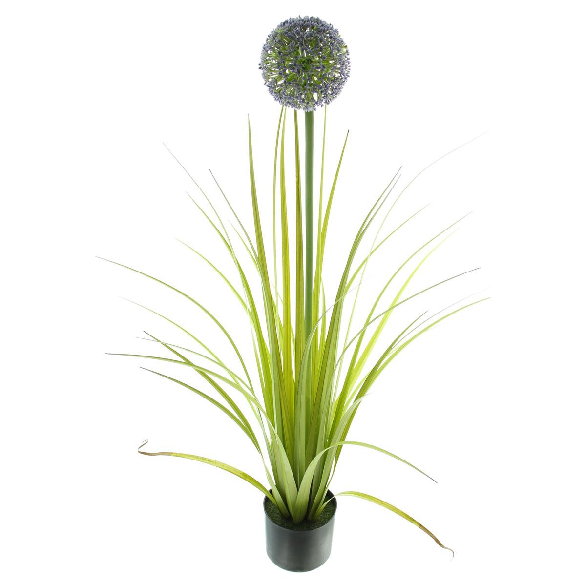 """Декоративное растение """"Аллиум"""" [08010],"""