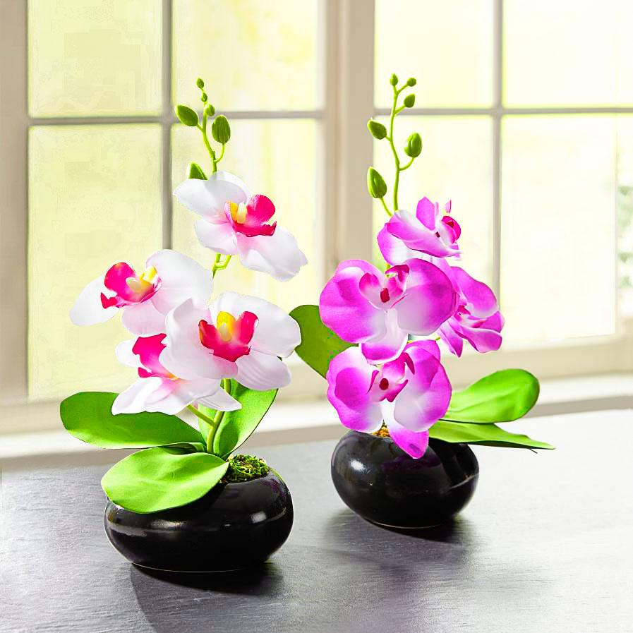 """Декоративное растение """"Орхидея белая"""" [08171],"""