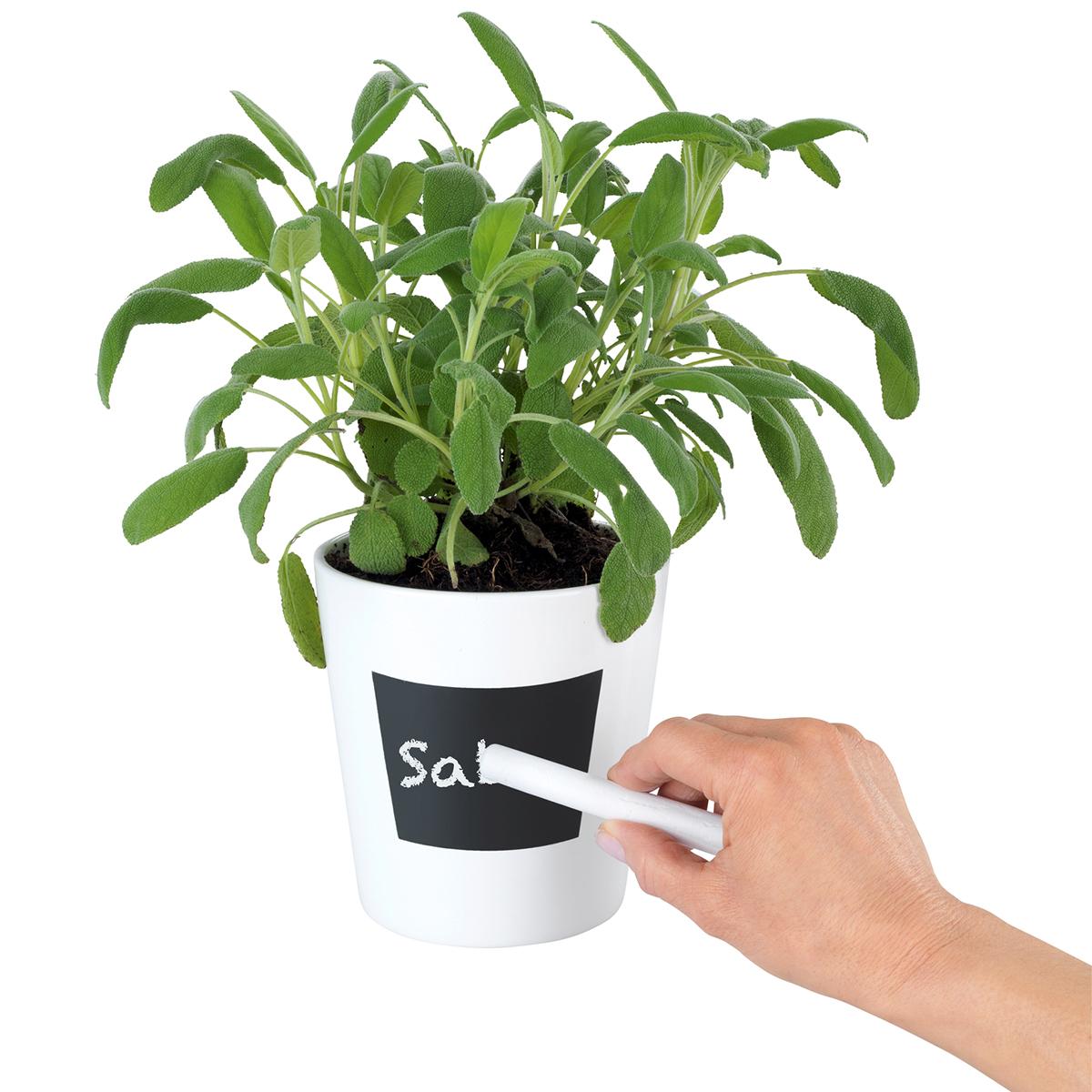 """Горшочек для растений """"Waia"""" [08289],"""