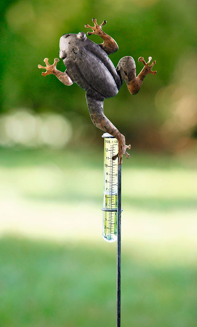 "Измеритель осадков ""Лягушка"" 2 предмета"