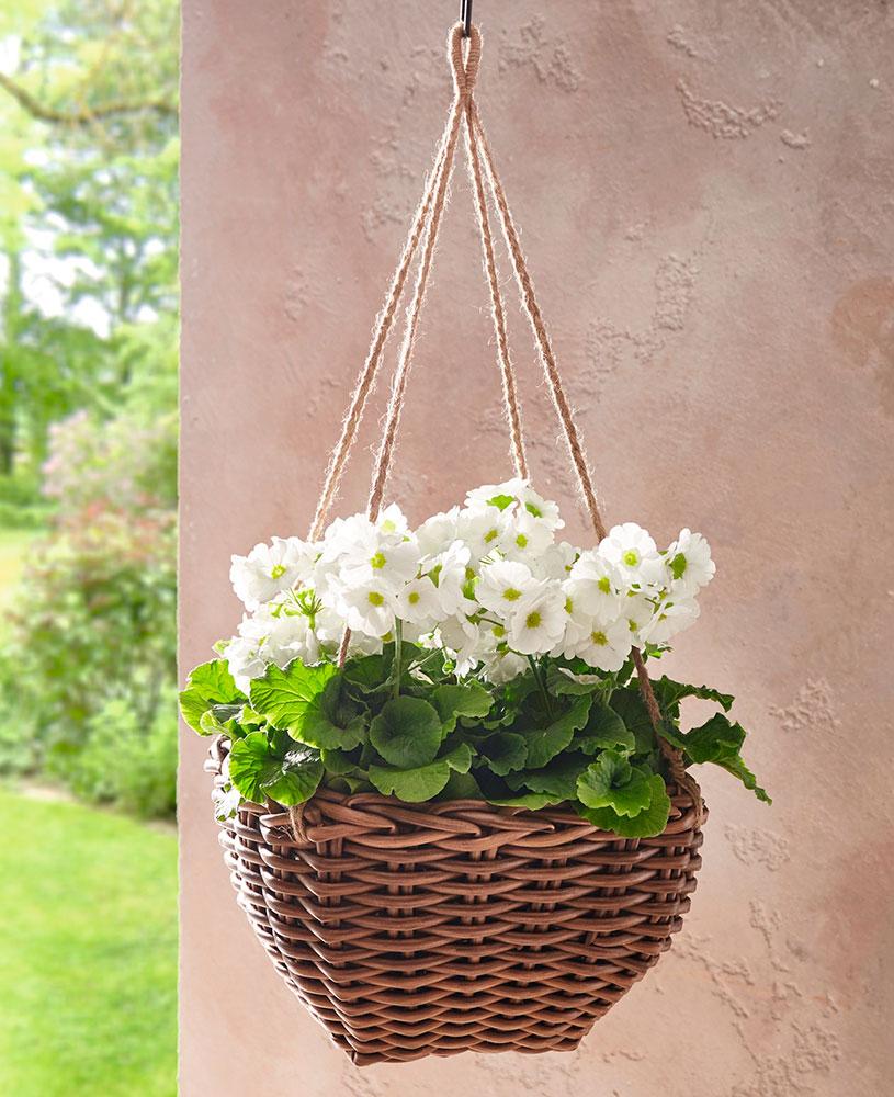 """Подвесное кашпо для цветов """"Поли"""""""
