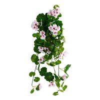 """Декоративное растение """"Розовая герань"""" [06682],"""